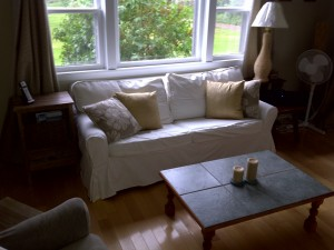 downstairs_living_room