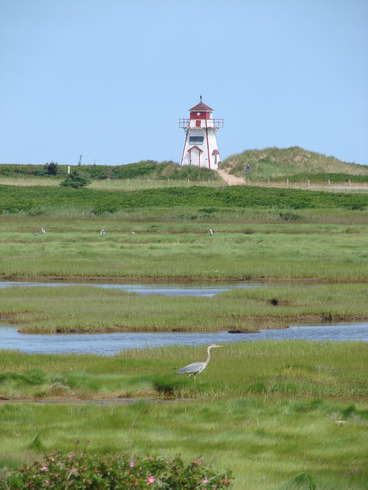 Covehead LIghthouse - a short walk from cottage